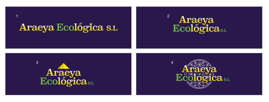 Araeya Ecologica S.L options